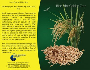 07---Rice-1_Side1_PRINT